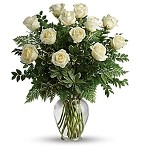 Premium White Rose Dozen
